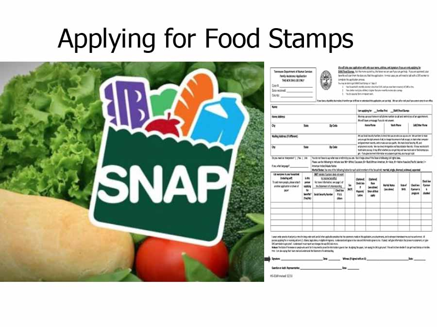 Applying for Food Stamps - Food Stamp Application | Apply for Food Stamps