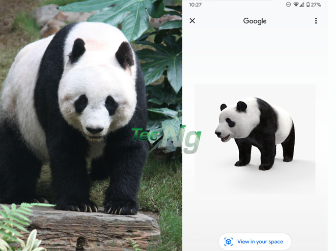 Panda View in 3D Google - How to View Panda 3D on Google | Google 3D Animals