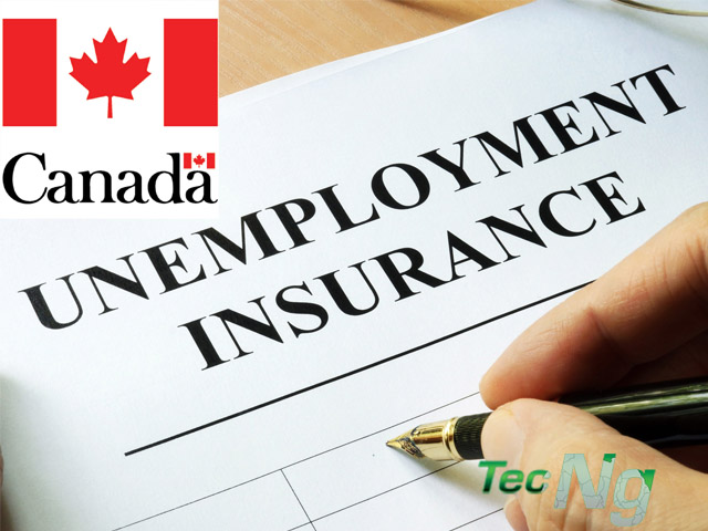 Employment Insurance - Apply for Employment Insurance | Employment Insurance benefits