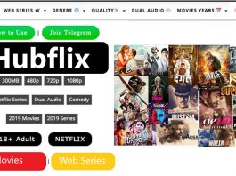 HubFlix - Stream and Download Movies For Free
